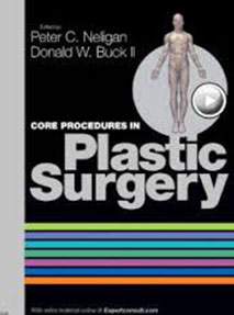 Core Procedures in Plastic Surgery